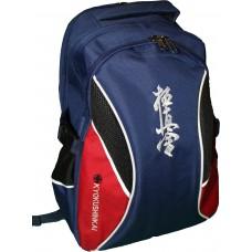 Рюкзак сине-красный